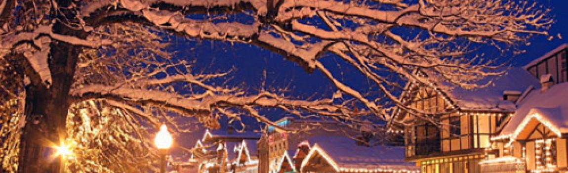 Orari festività natalizie 2014